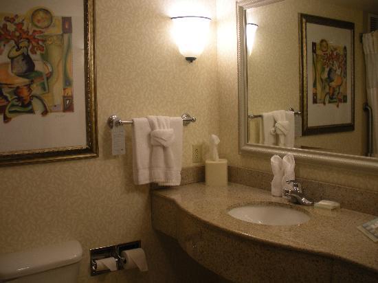 Hilton Garden Inn West Lafayette Wabash Landing: bathroom
