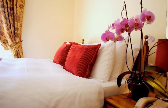 Waterloo Lodge: Single Room