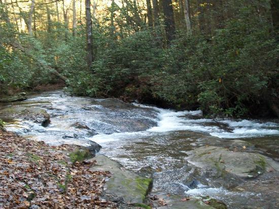 Cleveland, جورجيا: Creek
