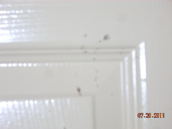 Travelodge Galveston: a lil mold on door