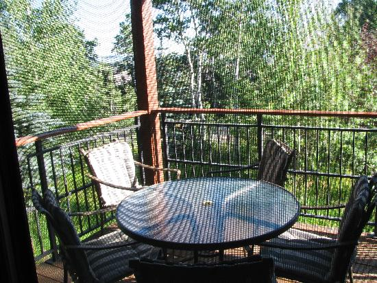 Moose Creek Townhomes: Patio off the dining area