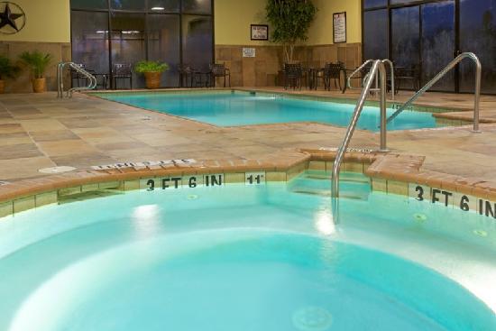 Holiday Inn Beaumont Plaza: Hot Tub & Swimming Pool