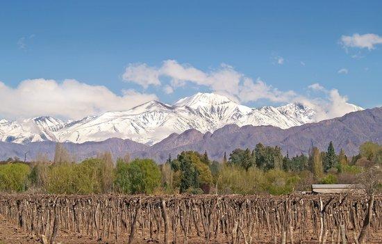 Lujan de Cuyo, Argentina: vista al Cordon del Plata