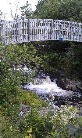 Rennie's River Trail: Multiple bridges wind over the river