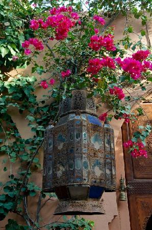 Dar Ayniwen Villa Hotel: Flowers
