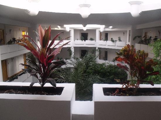 Hammamet Garden Resort & Spa: hotel sympa