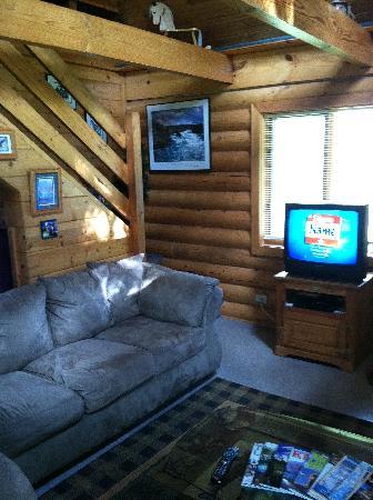 Alaska Kozey Cabins: Front Room