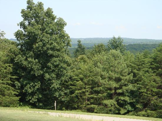 Cloudland Canyon State Park Cabins: View from Pavillion