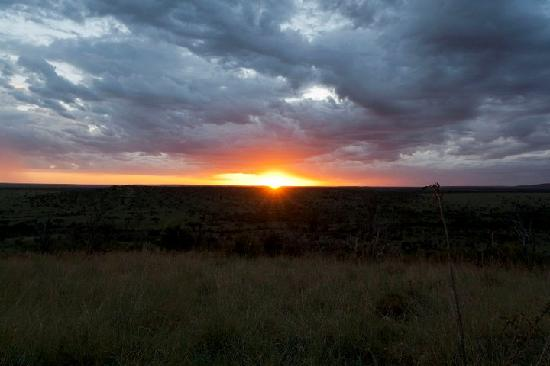 Porini Mara Camp: sunset on a hill in conservancy