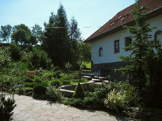 Veronika Panzio: Beautifully made up garden
