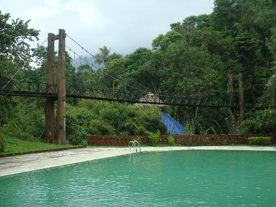 Swimming Pool Picture Of Vythiri Village Resort Vythiri Tripadvisor