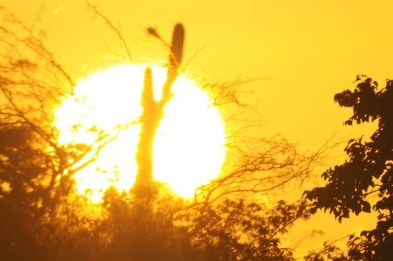 Sertao: Sunrise in Brasil -Rio Grande do Norte by Francisco Diniz