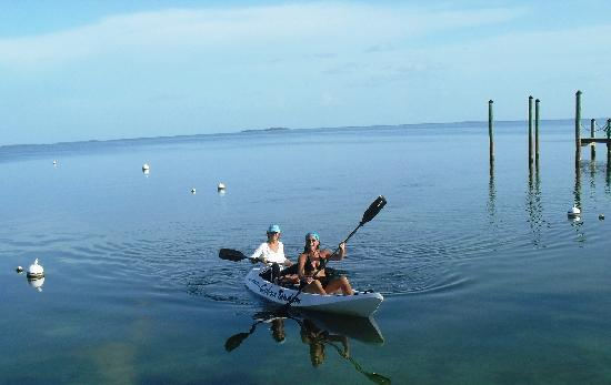 Best of Both Worlds: my kayak trip with Linda the Innkeeper ~ great way to start the morning off.