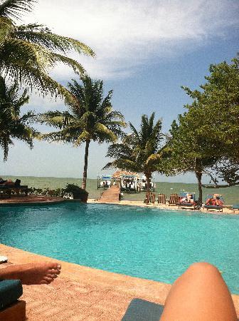 Hamanasi Adventure and Dive Resort: poolside