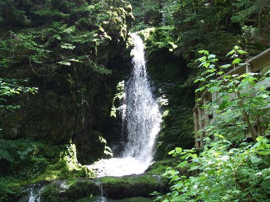 Alma, Canadá: Dickson Falls