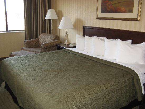 Quality Inn Valley Suites: Spokane Valley Quality Inn -- King bedroom