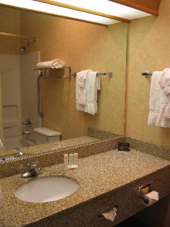 Quality Inn Valley Suites: Spokane Valley Quality Inn -- bath