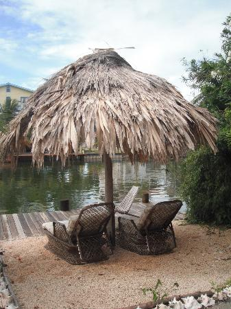 Three Iguanas Villa: A great place to relax.