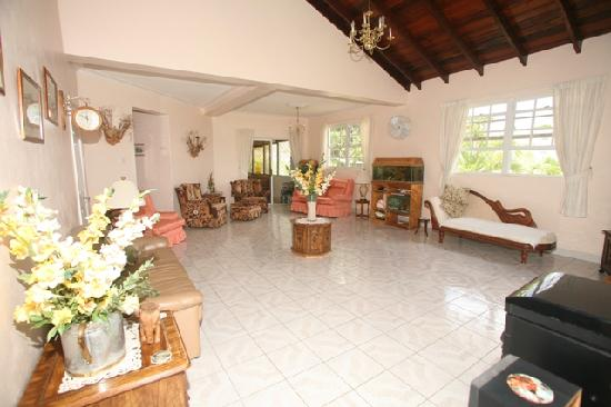 Palm Paradise Guest House + 2 Apartments: Watch T.V. or D.V.D or Listen to Music