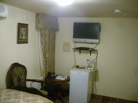 Wellesley Manor Boutique Hotel: Fridge and television