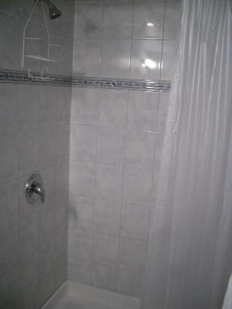 Wellesley Manor : Shower