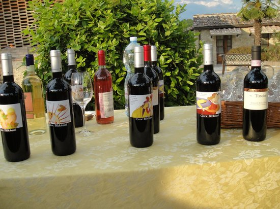 Country House Croce di Bibbiano: Wine tasting