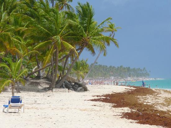 Iberostar Punta Cana: vista desde la playa
