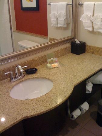 هوليداي إن دي إف دابليو ساوث: bathroom counter