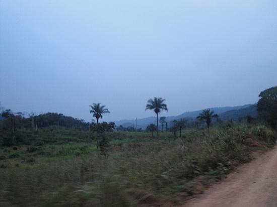 Sierra Leone: Jaiama Nimikoro, Kono