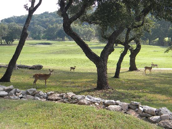 GreensKeeper Inn: the quiet of the morning on the porch
