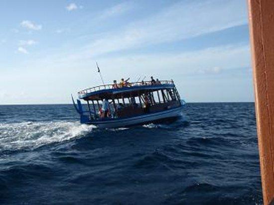 Baa Atoll: Sea Explorerのドーニ