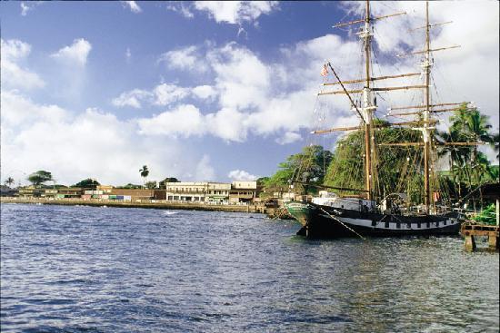 Roberts Tours Maui Reviews