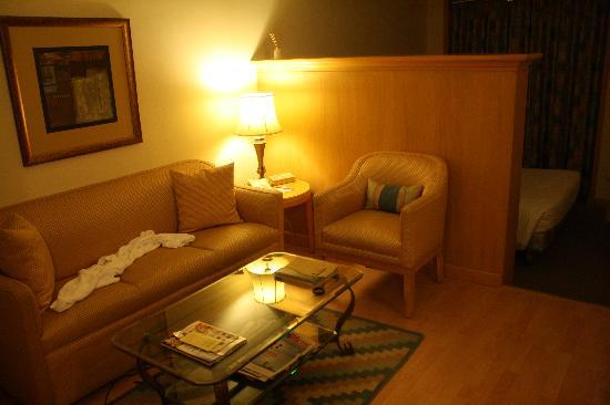 The Orchid Mumbai Vile Parle: Room