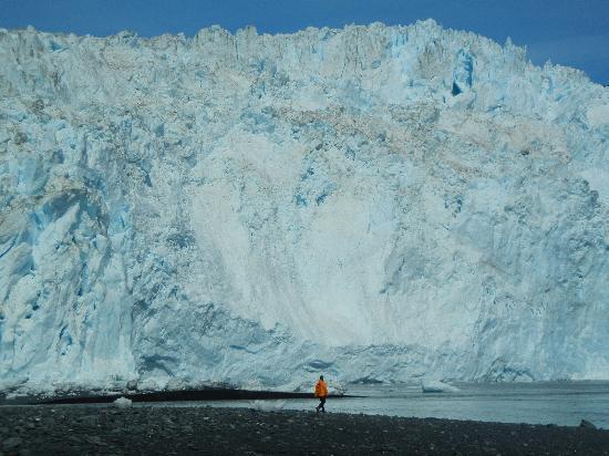 Alaska Fjord Charters: See glaciers up close