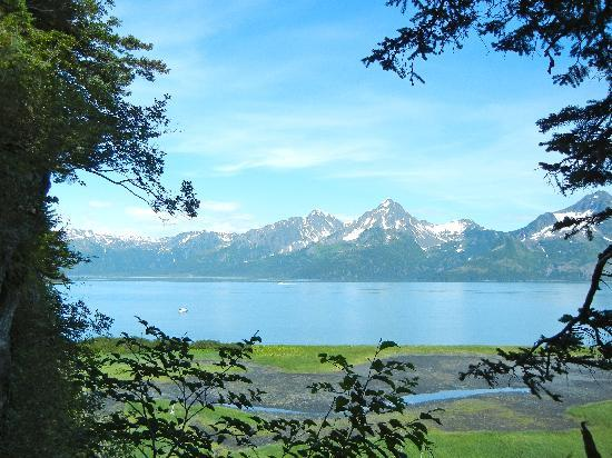Alaska Fjord Charters: Relaxed atmosphere