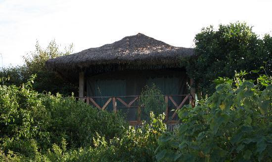 Kichakani Mara Camp: Tent Deck
