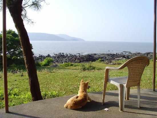 MTDC Beach Resort Harihareshwar: Sea View