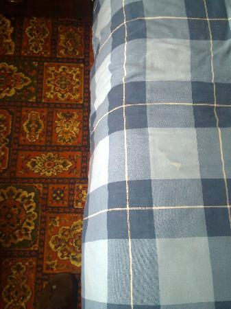 Myrtle Lodge : Stained duvet cover and 'sticky' carpet!