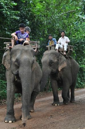 Siem Reap Private Day Tours: A change of transport