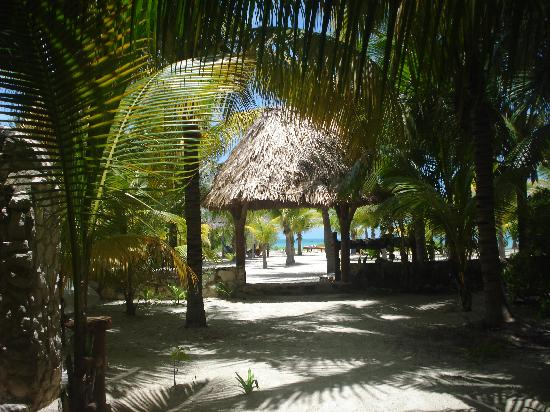 Zomay Hotel Holbox: The view