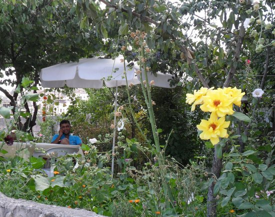 Kemal's Guest House: bloementuin