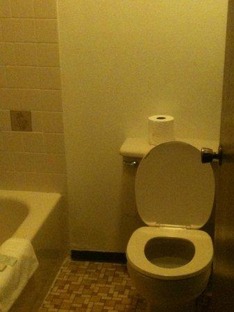 Eagle River Motel: bathroom
