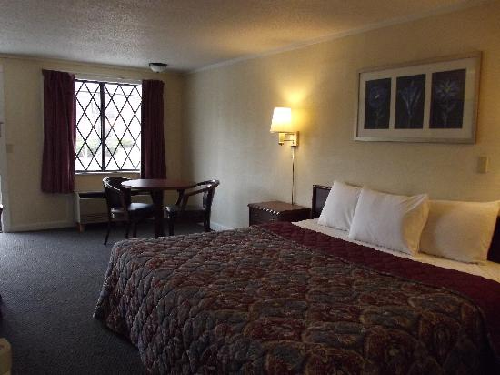 Knights Inn Cleveland/Macedonia: King Room
