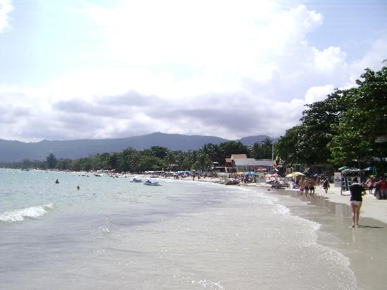 Coconut Grove Samui: And the beach in the sun
