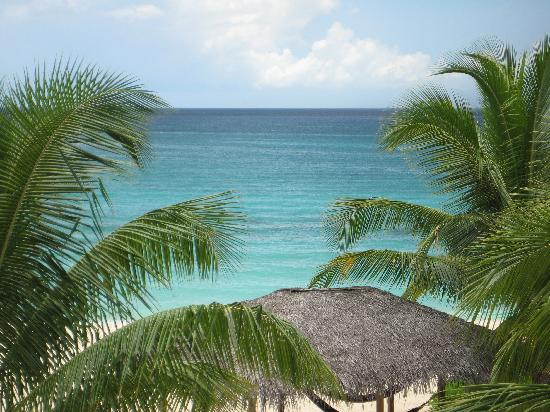 Beachcomber Grand Cayman: A different view from patio of #10