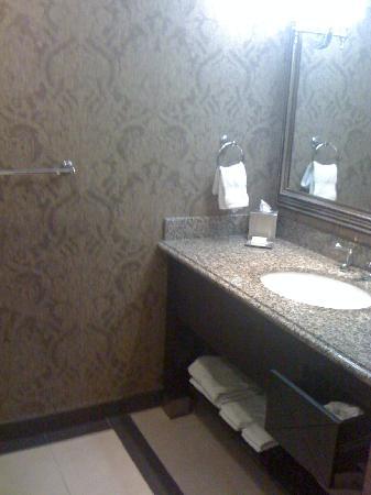 Bathroom Sinks Okc bathroom sink - picture of the skirvin hilton oklahoma city
