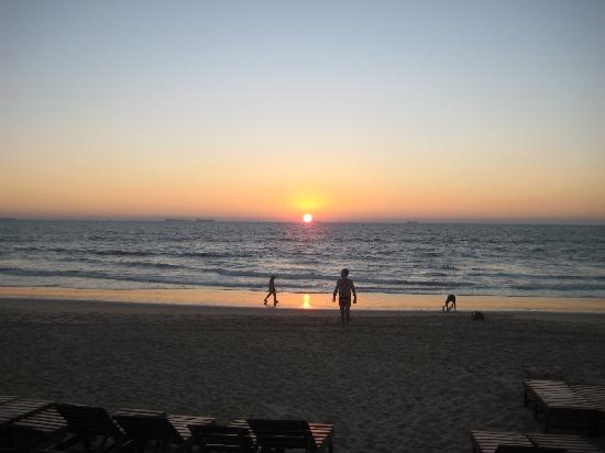 Candolim Beach : The view from Mama Cecelias at night