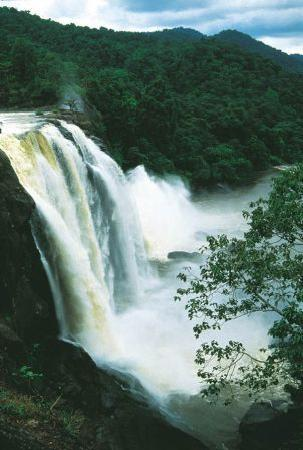 Carnival Tours & Travels: Athirapally Waterfalls Tour Packages Kerala