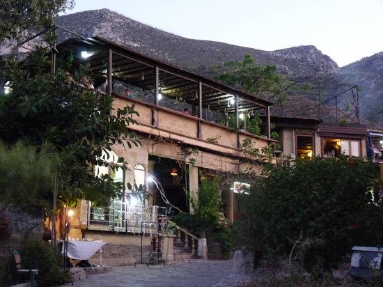 Bellapais, قبرص: The restaurant
