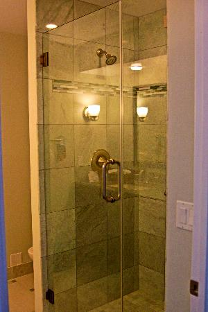 Del Mar Inn Hotel: New shower!